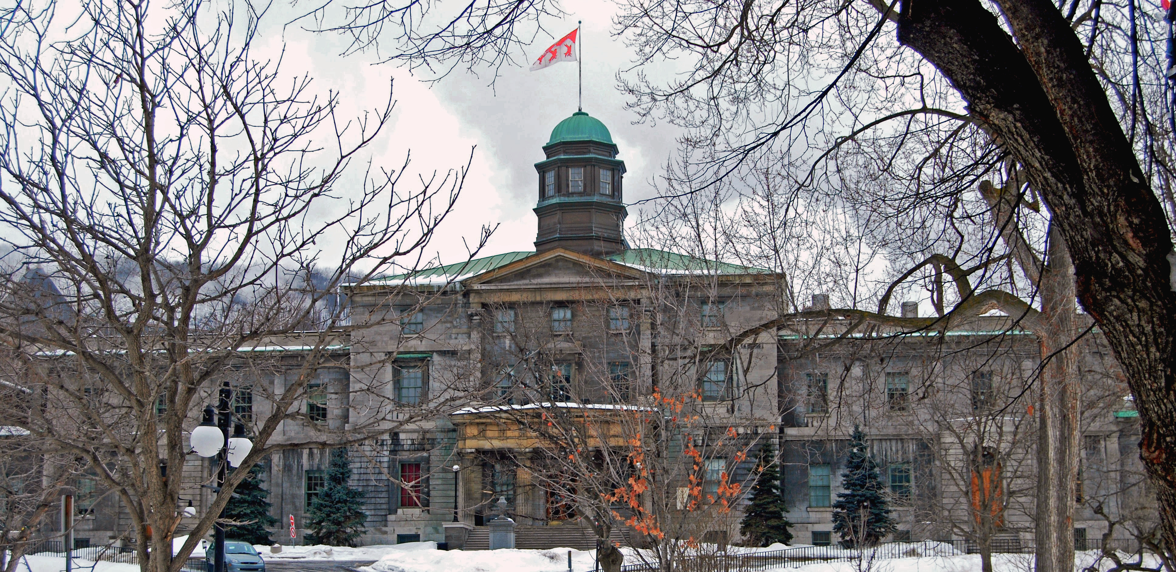 McGill's International Students Hold Fast to Future Hopes