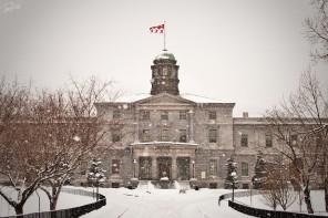 McGill Falls Slightly in Rankings, Entire School Despairs