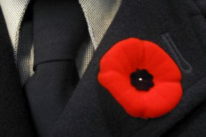 A Poppy by Any Other Name